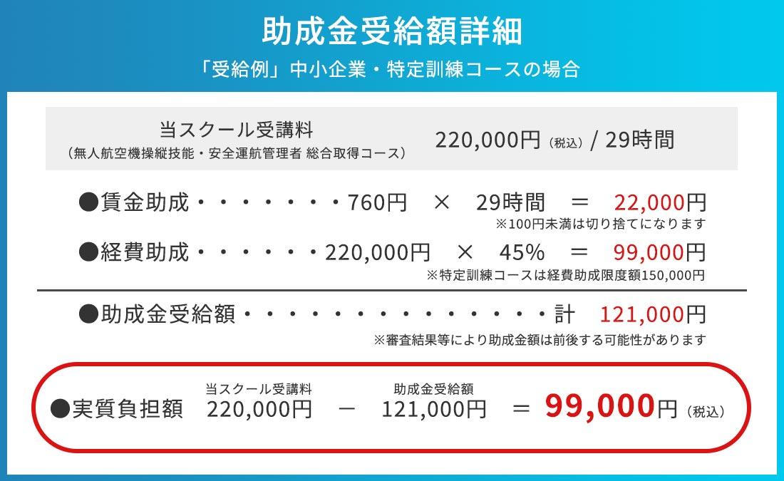 助成金受給額詳細(例)